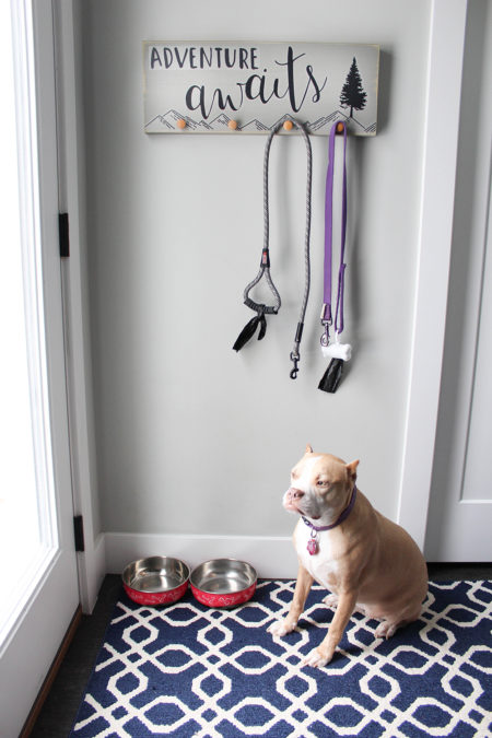 Adventure Awaits Dog Leash Hanger DIY Project from Paper Riot Co.